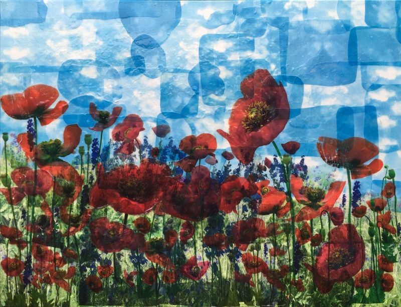 Large Poppies, by Saybra Giles