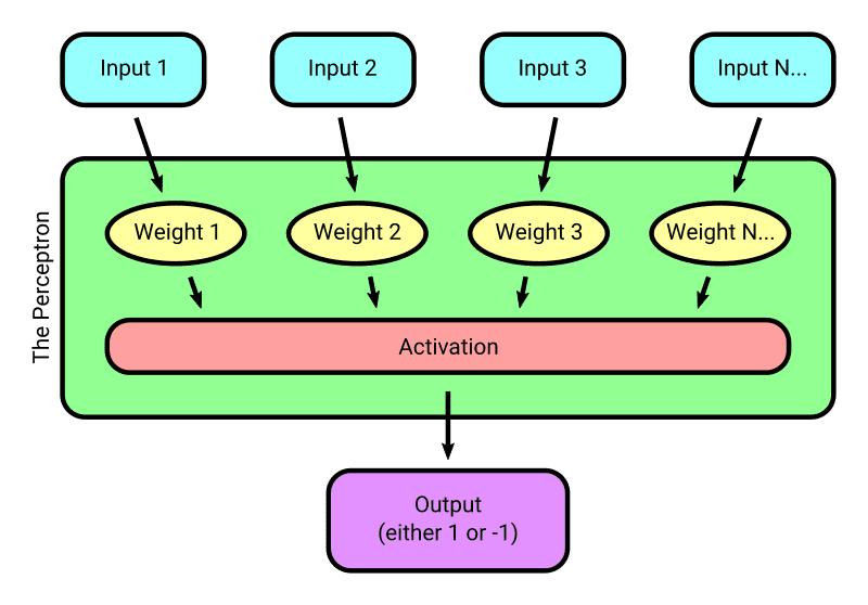 Perceptron diagram